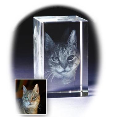 3D Portrait in Glas