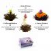 Erblühtee (schwarzer Tee)