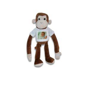 Plüsch Affe mit Foto