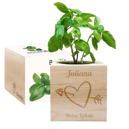 Ecocube Valentinstag Herz mit Pfeil
