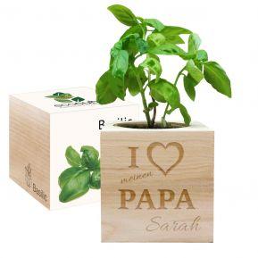 Ecocube für Papa