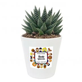 Zimmerpflanze Sukkulente mit personalisiertem Etikett für Lehrerin