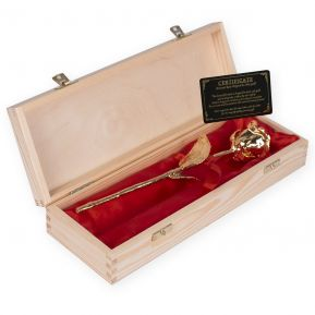 Goldene Rose in Holzkoffer