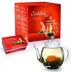 Erblühtee und Teekanne
