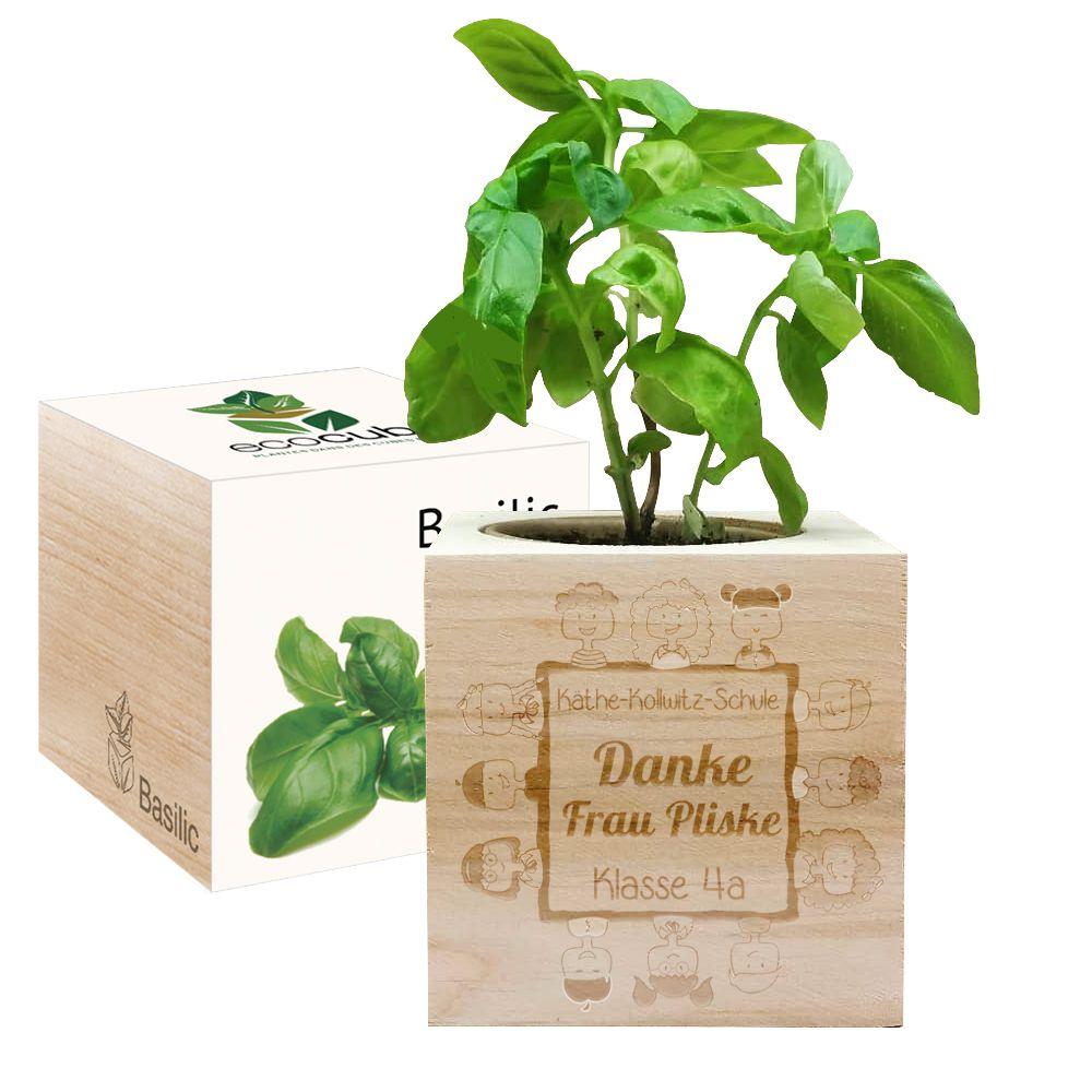 Ecocube für Lehrerin